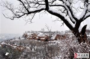 【摄影分享】2018武功第一场雪,爆棚朋友圈!分享立即看哦!