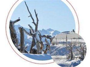 福利又又双双����来啦,就在大鸿寨滑雪场!