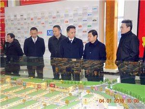 中共丰都县委书记徐世国,率队视察丰都国际商贸城。