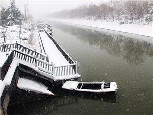 临泉在暴雪后居然这样美!