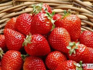这是草莓控的福音,这是初恋的味道。