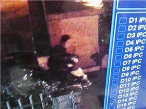 猖狂!长宁这个小偷竟在小区偷车,大家小心!