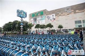 哈罗共享单车进入儋州啦!扫码骑走,还有免费骑行活动哦!