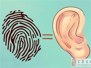 你的耳朵透露了你什么?