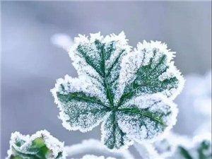 雪和冬的约定