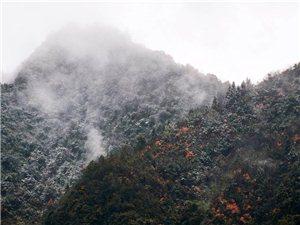【乡村美景】雪虽少,却也铺满山头