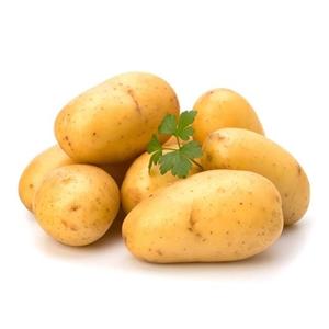 冬天让孩子常吃这五种蔬菜可以防寒保暖,增强抵抗力,建议收藏