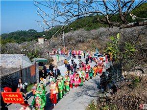 陆河举办梅花节 吸引万众赏梅