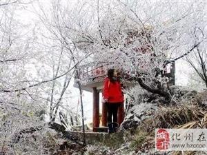 跟寒冷说拜拜!下周,化州最高温达24度!