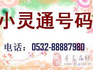 澳门网上投注官网8位数号码  小灵通升级号码  可以放手机用