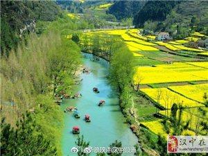 勉县将承办2018中国最美油菜花海汉中旅游文化节