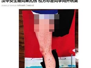 汉中女生被同桌扎伤