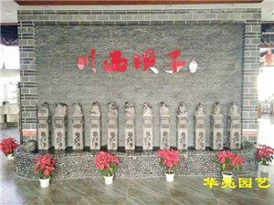 广汉市华亮园艺种植场推荐适合室内大厅摆放的植物-