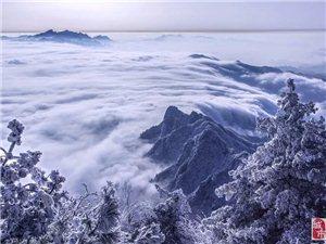 """栾川巨幅冰帘洞!每年冬天总有那么几天""""冰城雪乡""""的样子。"""