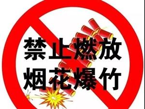 即日起,临泉这些区域全面禁燃烟花爆竹和大盘香!