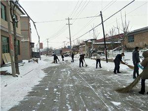 新区雪后新风:安新中六村见闻(图)