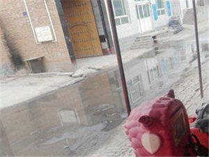 大阳村的街道就跟猪圈差不多