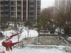 下雪天,都窝在家里了,冷清啊~