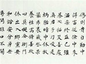 【书法鉴赏】李景龙:书法的哲理