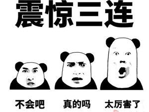 一人能扮演整个娱乐圈!她变脸成唐嫣,朱茵,刘涛,和周杰伦……