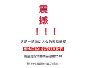 2018年首件大事!高逼格的大型花���即�⒖战荡笮匏�啦!!!
