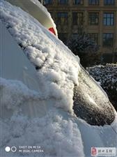 2018 胶州的美丽雪景手机版
