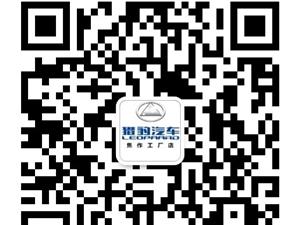 猎豹汽车新车发布会暨岁末冲量团购会