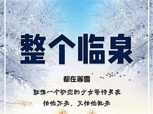 临泉今年第二场雪,下的真美!但却有5个坏消息……