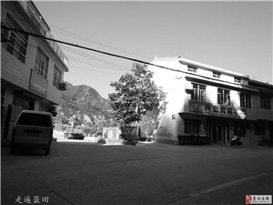 走遍蓝田、2018爱丽舍闫家村小哑呼4组、穿越旅行。