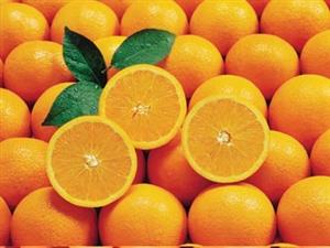 2000个福橙免费吃!带上孩子,更多刺激好玩的等着您