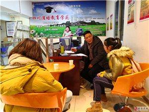 安岳・成都:教育培训、学法指导、学业规划免费咨询