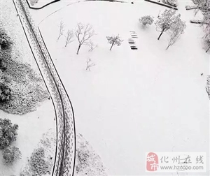 最低7℃!霸王级冷空气即将袭击化州!广东又下雪了,被冷哭的节奏!