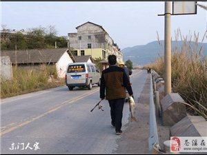 【苍溪】走进陵江镇 �S拍几个村【图】