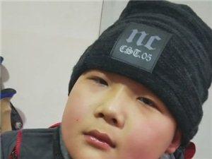 澳门大小点网址师徒徒步西藏第四十一天!多了一位12岁的唐山小肉球!