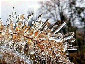 冬天的美景