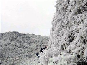 �雄花山�S�B雪景之二(精�史鲐�工作�M)