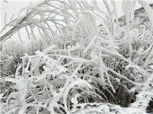 好消息!降水�p弱�F州雨雪天�忸A�周三�Y束