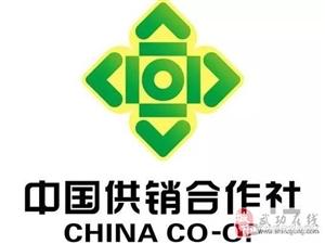 【武功供销】乡村振兴 供销社能为农民做点啥?