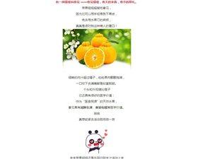忠县周末有耍事,一起去黄金镇采摘忠橙、吃刨猪汤…
