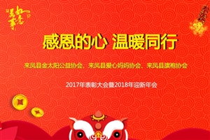 """""""感恩的心,温暖同行""""来凤义工、爱心妈妈、旗袍协会2017年"""