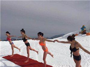 伏牛山滑雪场2100米的山顶,比基尼美女在练瑜伽!