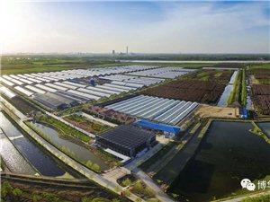 拥抱自然、增进团队动力、感受农耕文化――博华农业海棠乐园欢迎您!