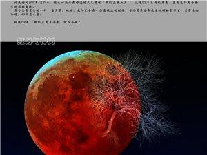 【红月与神树】