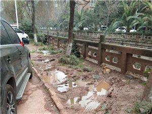 龙水河滨河阳光二期大门外公共面积长期被霸占!!