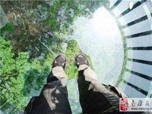 九龙江景区玻璃栈道开业咯,堪称周边最长的悬空玻璃栈道!