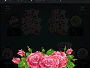 澳门网上投注赌场平台的伙伴 一起来