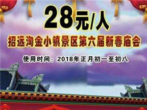 淘金小镇+博览苑春节庙会电子票25元/位