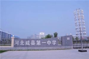 2018年2月8日河北邢台宁晋新季玉米价格行情