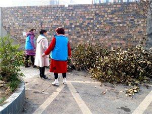 九江路社区开展春节前安全生产大排查及春节前环境卫生集中整治活动