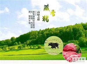 过大年,杀年猪!香源藏香猪感恩回馈活动,所有藏香猪肉6.8折优惠,还有丰厚礼品赠送!
